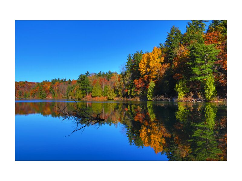 Canada de Cyril Jourdan, Prodi Art, Lac, forêt, paysage, nature, Couleur, automne, Voyage, Canada