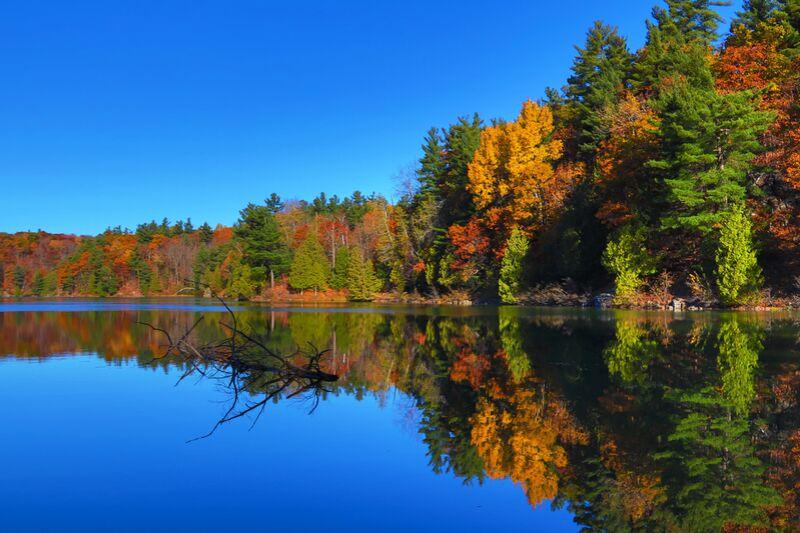Canada de Cyril Jourdan Decor Image