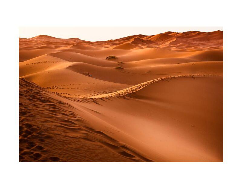 مرزوكة from Aliss ART, Prodi Art, dawn, desert, dune, gold, hot, landscape, Morocco, sand, Sun, sunset, travel, dry, Marrakesh, sand dune