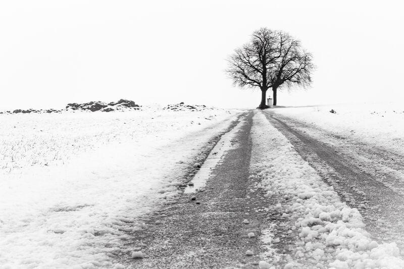 La Fin du Chemin de Eric-Anne Jordan-Wauthier Decor Image