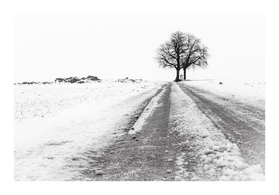 La Fin du Chemin from Eric-Anne Jordan-Wauthier, Prodi Art, snow, landscape, Photography, Hivers, HighKey