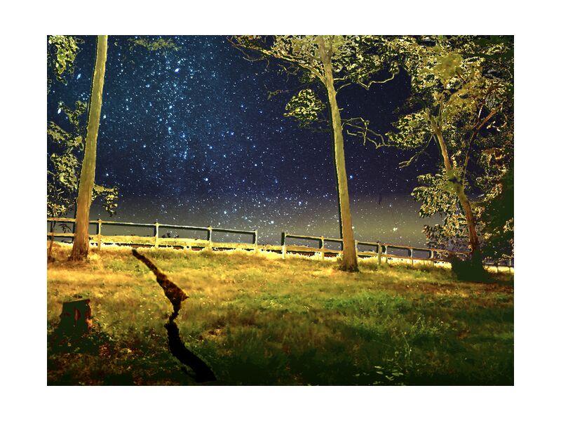 The gate from Adam da Silva, Prodi Art, night, stars, trees, meadow, blue