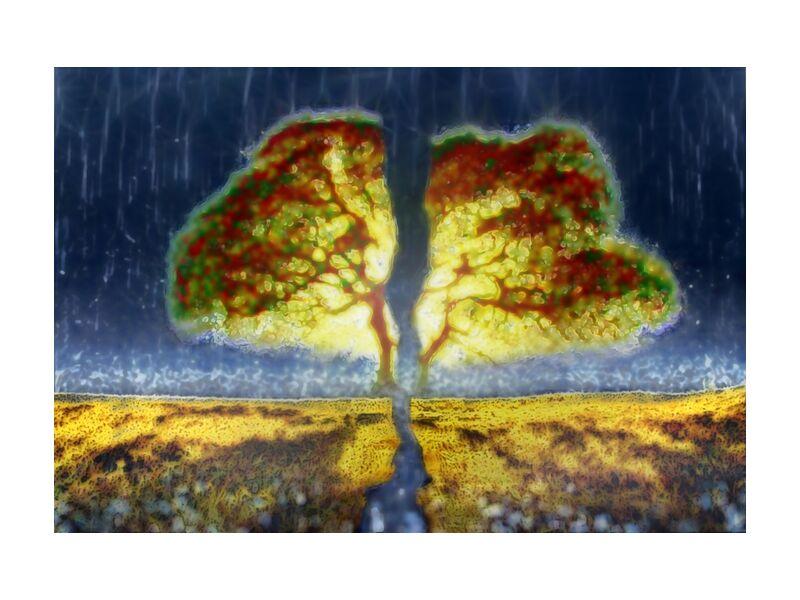 From seed to trunk from Adam da Silva, Prodi Art, trunk, tree, painting, rain, graine