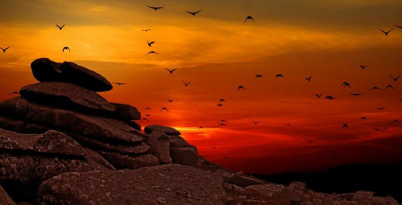 Flying to the Sunset from Pierre Gaultier Decor Image