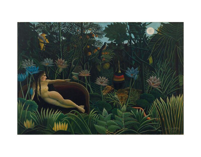 The dream desde AUX BEAUX-ARTS, Prodi Art, bosque, salvaje, noche, luna, Rousseau, selva, soñar
