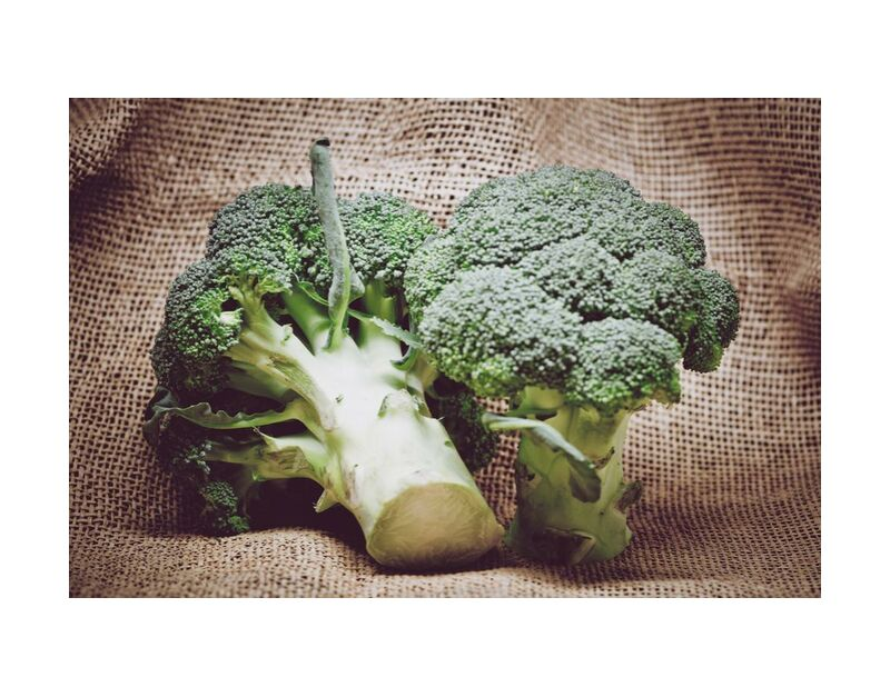 Broccoli from Pierre Gaultier, Prodi Art, vegetarian, vegetable, stalk, salad, raw, organic, nutrition, leaf, ingredient, healthy, health, grow, green, freshness, fresh, food, flora, farm, eat, diet, detail, delicious, cooking, cook, color, -up, close up, broccoli, agriculture