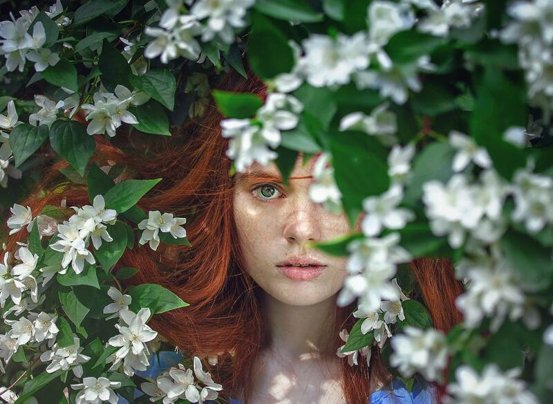 Behind the flowers from Pierre Gaultier Decor Image