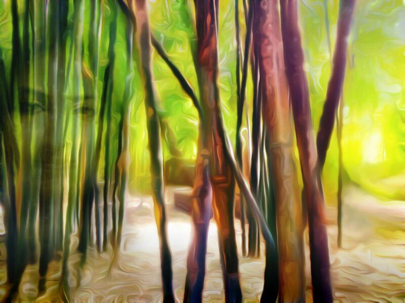 Derrière les bambous de Adam da Silva Decor Image