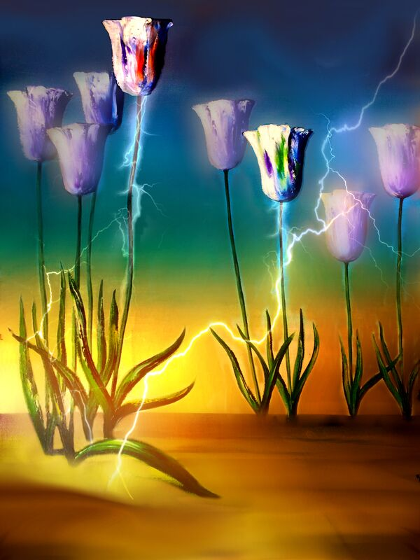 Vital energy from Adam da Silva Decor Image