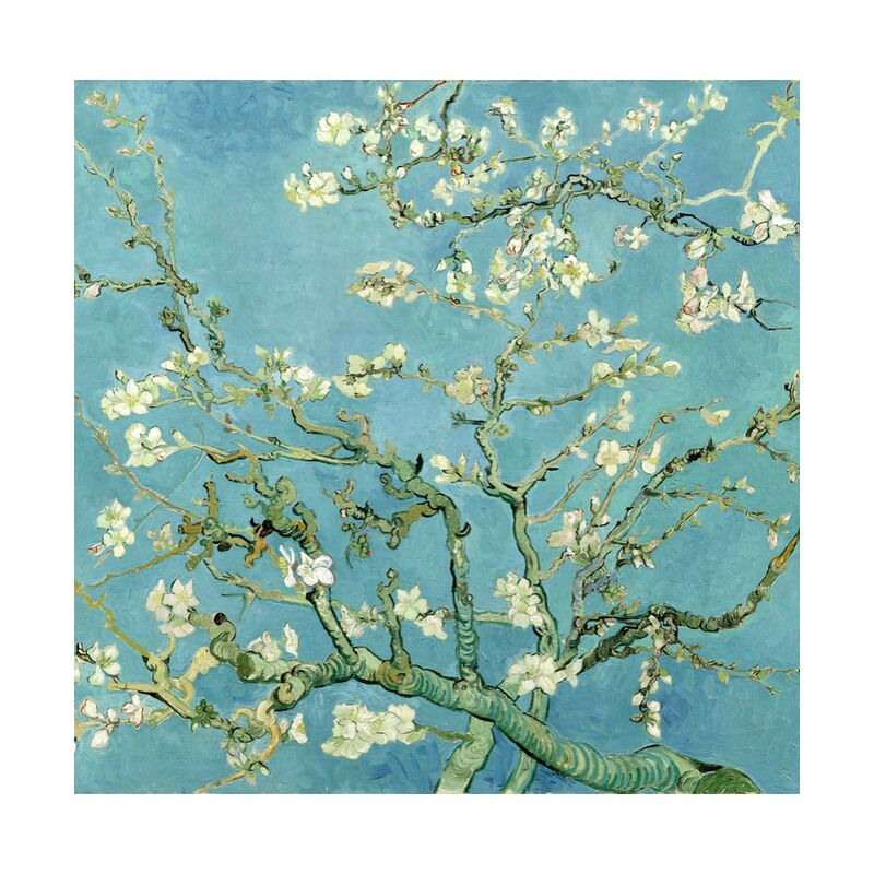 Almond Blossom, Saint-Rémy - VINCENT VAN GOGH 1890 from Aux Beaux-Arts, Prodi Art, flowering tree, , nature, flowers, branch, tree, painting