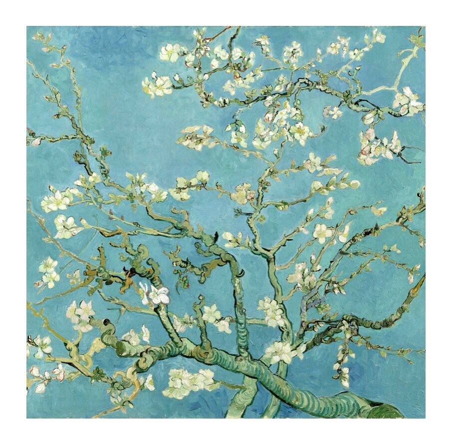 Almond Blossom, Saint-Rémy - VINCENT VAN GOGH 1890 from AUX BEAUX-ARTS, Prodi Art, painting, tree, branch, flowers, nature, VINCENT VAN GOGH, flowering tree