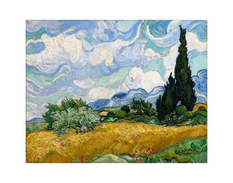 Wheat Field with Cypresses - VINCENT VAN GOGH 1889 desde AUX BEAUX-ARTS, Prodi Art, pintura, nubes, árbol, prado, verde, naturaleza, campos de trigo, ciprés, campos, arbusto