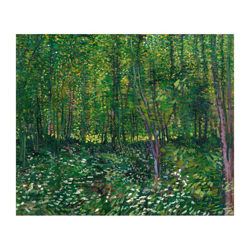 Trees and undergrowth - VINCENT VAN GOGH 1887 from Aux Beaux-Arts, Prodi Art, undergrowth, VINCENT VAN GOGH, painting, flowers, trees, forest, green, nature, wood
