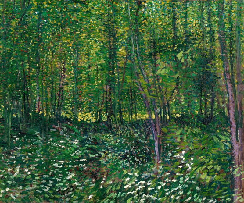 Trees and undergrowth - VINCENT VAN GOGH 1887 from Aux Beaux-Arts Decor Image
