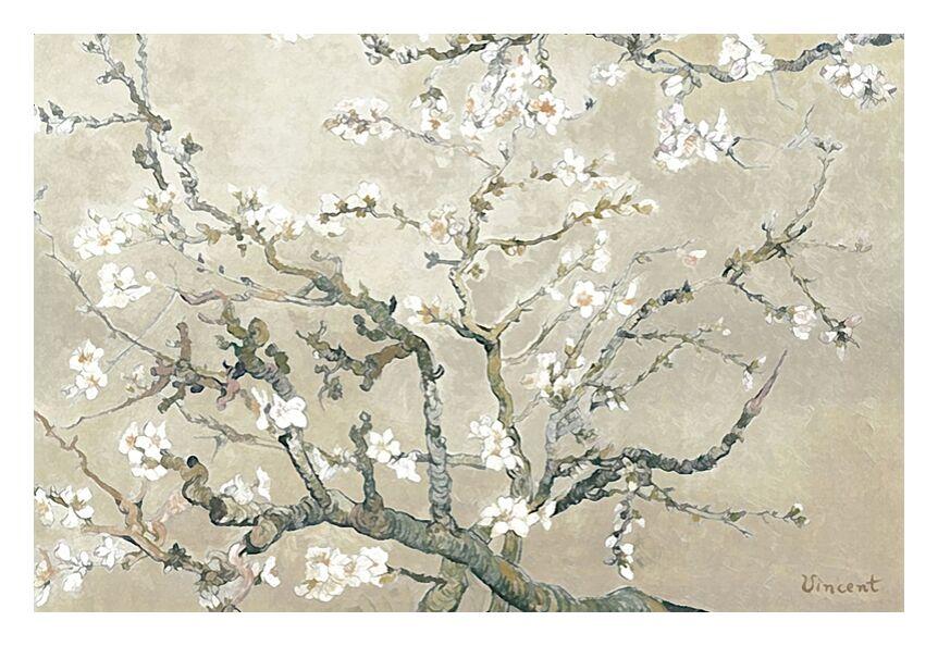 Branches d'amandier en fleurs, Saint-Rémy - VINCENT VAN GOGH 1890 de AUX BEAUX-ARTS, Prodi Art, peinture, branche, amandier, arbre, fleur, arbre en fleur, VINCENT VAN GOGH