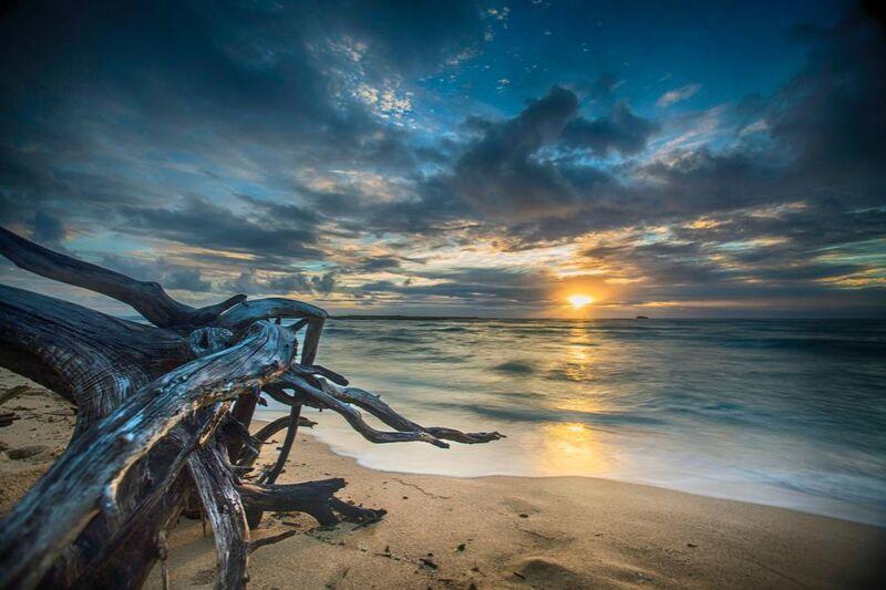 Le coucher de soleil from Aliss ART Decor Image