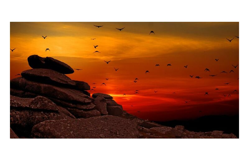 مسار from Aliss ART, Prodi Art, birds in flight, sunset, sunrise, silhouette, scenic, rocks, landscape, flying, flock, dusk, birds, dawn