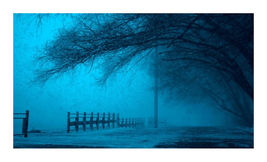 Brouillard from Aliss ART, Prodi Art, cold, dark, fog, frozen, ice, lake, landscape, outdoors, reflection, scenic, snow, street, trees, weather, winter, eerie, fear, fence, foggy, mystery, pathway, , road