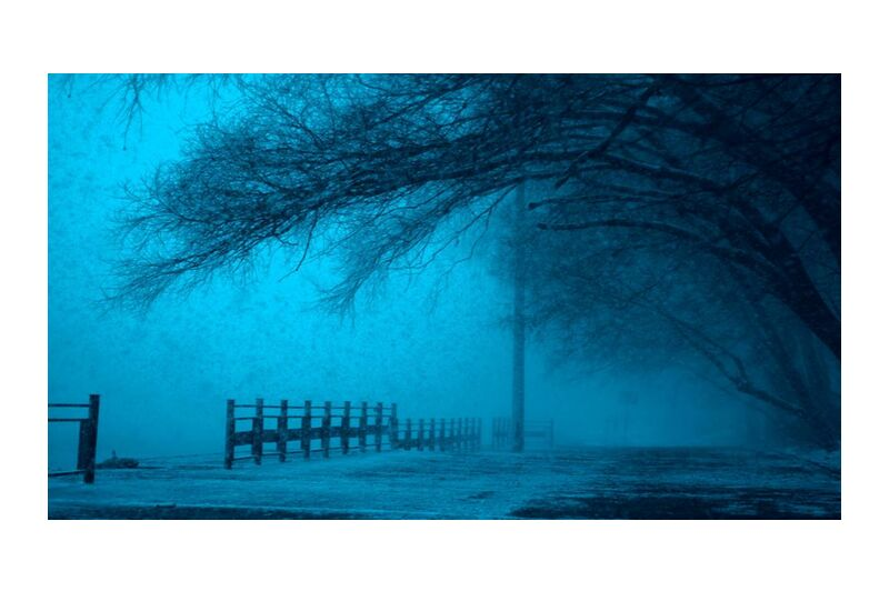 ضباب from Aliss ART, Prodi Art, cold, dark, fog, frozen, ice, lake, landscape, outdoors, reflection, scenic, snow, street, trees, weather, winter, eerie, fear, fence, foggy, mystery, pathway, pole, road
