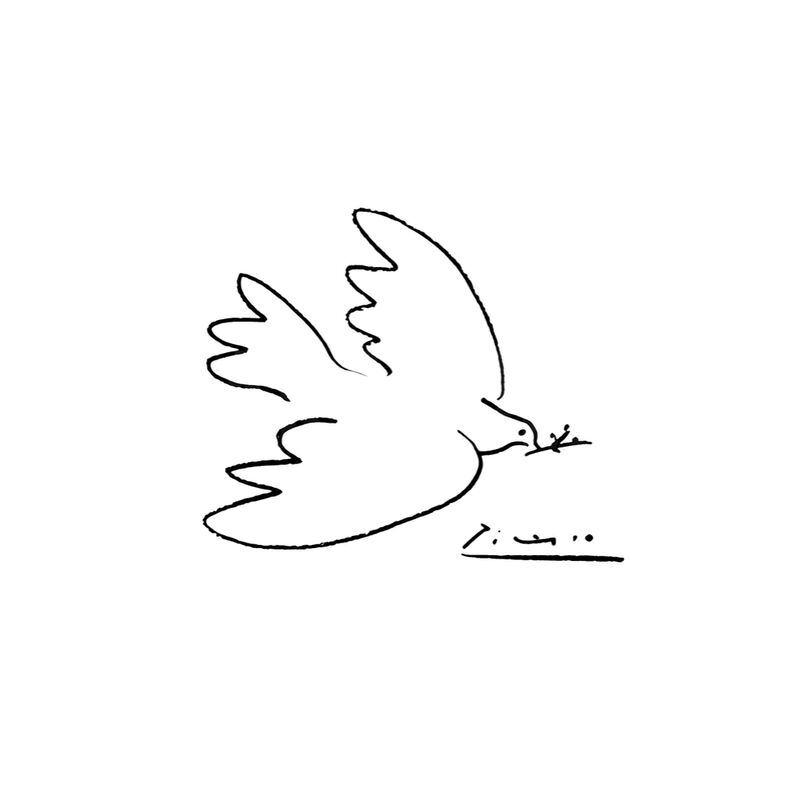 Dove of peace - PABLO PICASSO from Aux Beaux-Arts, Prodi Art, drawing, dove, pencil drawing, PABLO PICASSO
