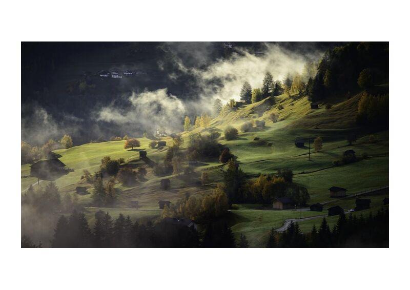 Fog on the hill from Aliss ART, Prodi Art, fog, hills, landscape, mist, nature, trees