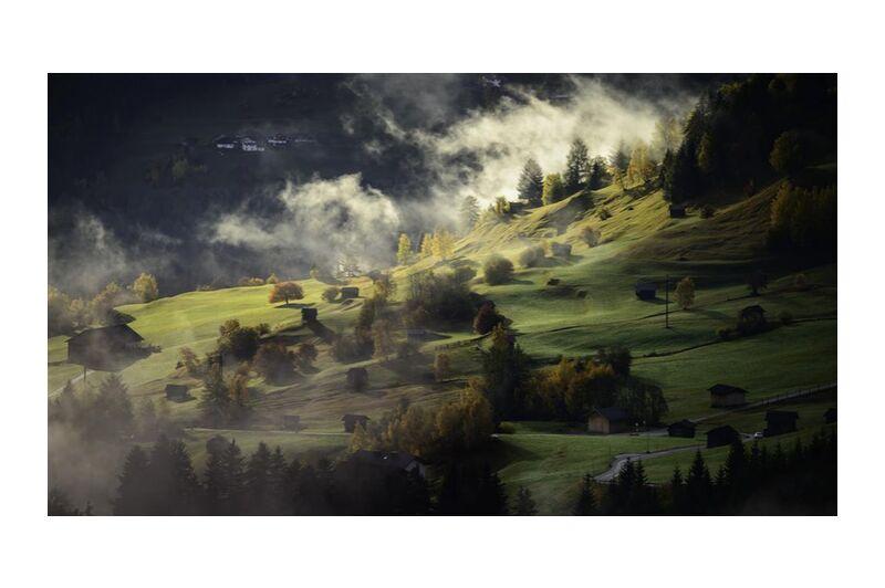 Fog on the hill from Aliss ART, Prodi Art, trees, nature, landscape, hills, fog