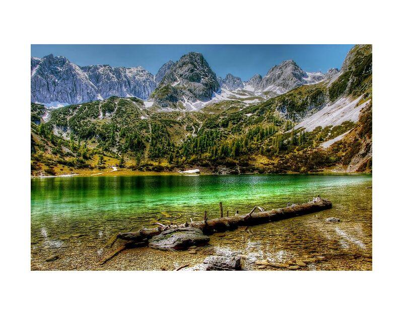 Lac vert de Aliss ART, Prodi Art, bûche, bois, eau, vallée, des arbres, Voyage, neige, scénique, Roche, fleuve, réflexion, en plein air, montagnes, paysage, Lac, hdr, du froid, alpin, aventure