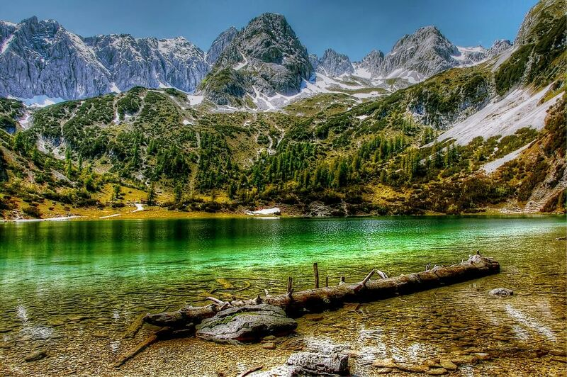 Green lake from Aliss ART Decor Image