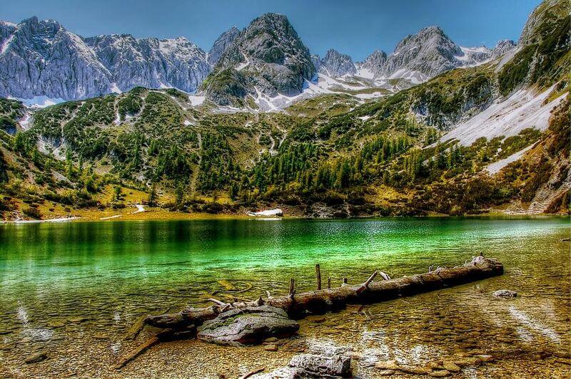 البحيرة الخضراء from Aliss ART Decor Image