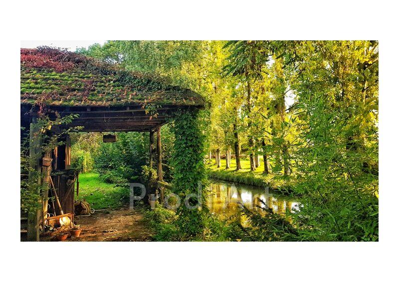 petite cabane au bord de l'eau from ivephotography, Prodi Art, green, nature