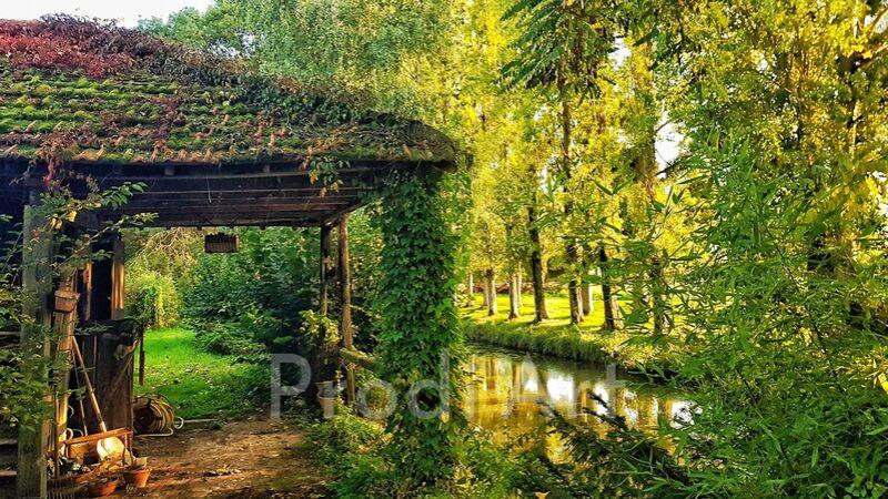 petite cabane au bord de l'eau from ivephotography Decor Image