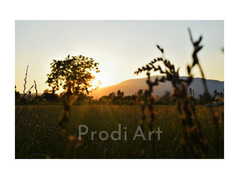 coucher de soleil from ivephotography, Prodi Art, nature, Sun, sunset