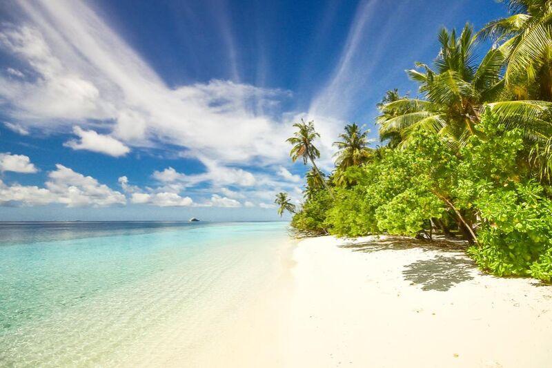 جزيرة from Aliss ART Decor Image
