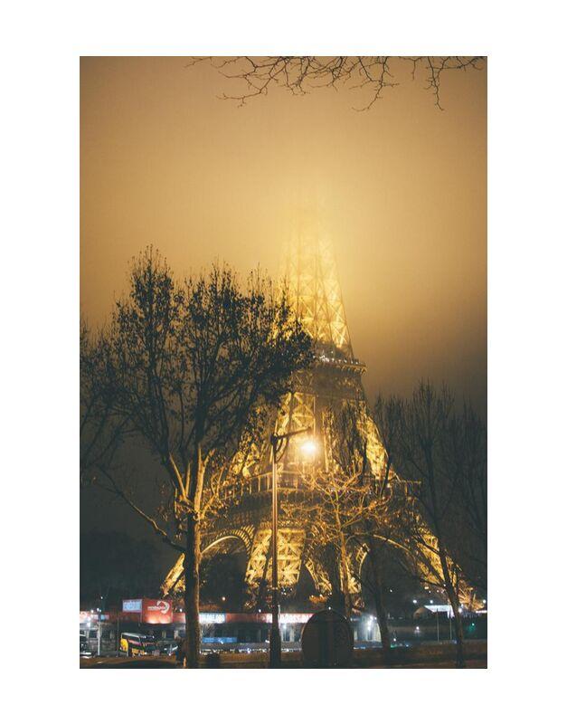 La dame de fer masquée de Aliss ART, Prodi Art, branches d'arbre, lampadaires, Structure en acier, 4k wallpaper, des arbres, la tour, paris, en plein air, nuit, lumières, illuminé, HD wallpaper, France, brumeux, brouillard, soir, tour Eiffel, ville