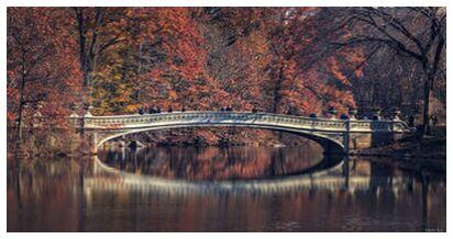 Central Park - Bow Bridge from Caro Li, Prodi Art, Art photography, Giclée Art print, Prodi Art