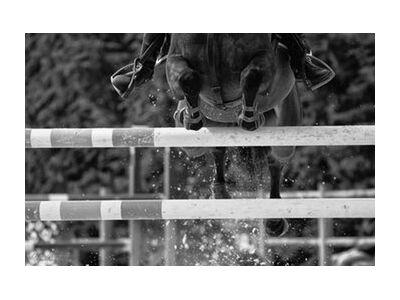The crossing from Mayanoff Photography, Prodi Art, Art photography, Giclée Art print, Standard frame sizes, Prodi Art