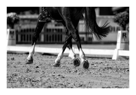 Lateral movements from Mayanoff Photography, Prodi Art, Art photography, Giclée Art print, Prodi Art