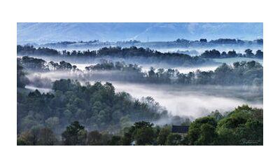 Foggy morning from Mayanoff Photography, Prodi Art, Art photography, Giclée Art print, Standard frame sizes, Prodi Art