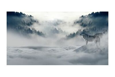Solitary Wolves from Pierre Gaultier, Prodi Art, Art photography, Giclée Art print, Standard frame sizes, Prodi Art