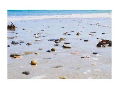 La plage from Loïse Raoult, VisionArt, Art photography, Art print, Standard frame sizes, Prodi Art