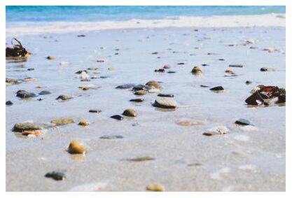 La plage from Loïse Raoult, VisionArt, Art photography, Art print, Prodi Art