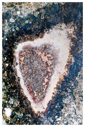 Amour toujours de Marie Guibouin, VisionArt, Photographie d'art, Impression d'art, Prodi Art