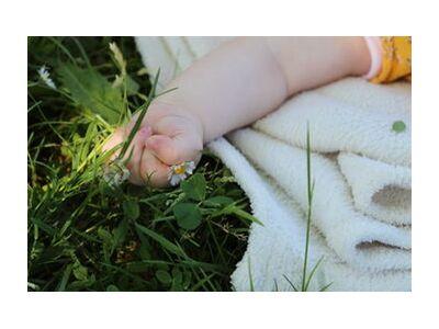 Petite main dans l'herbe de jenny buniet, Prodi Art, Photographie d'art, Impression d'art, Tailles de cadre standard, Prodi Art