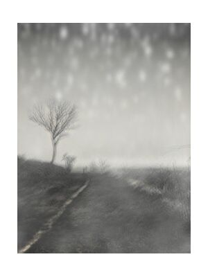 The winter path from Adam da Silva, Prodi Art, Art photography, Giclée Art print, Standard frame sizes, Prodi Art