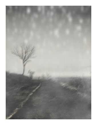 The winter path from Adam da Silva, Prodi Art, Art photography, Art print, Prodi Art
