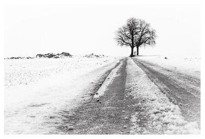 La Fin du Chemin from Eric-Anne Jordan-Wauthier, Prodi Art, Art photography, Giclée Art print, Prodi Art