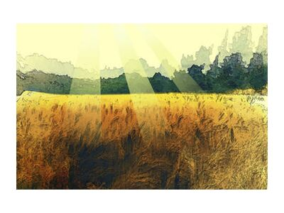 The wheat and its sun from Adam da Silva, Prodi Art, Art photography, Giclée Art print, Standard frame sizes, Prodi Art