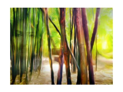 Behind the bamboos from Adam da Silva, Prodi Art, Art photography, Giclée Art print, Standard frame sizes, Prodi Art