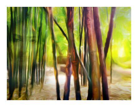 Behind the bamboos from Adam da Silva, VisionArt, Art photography, Art print, Prodi Art