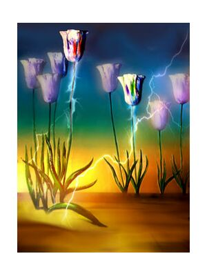 Vital energy from Adam da Silva, Prodi Art, Art photography, Giclée Art print, Standard frame sizes, Prodi Art